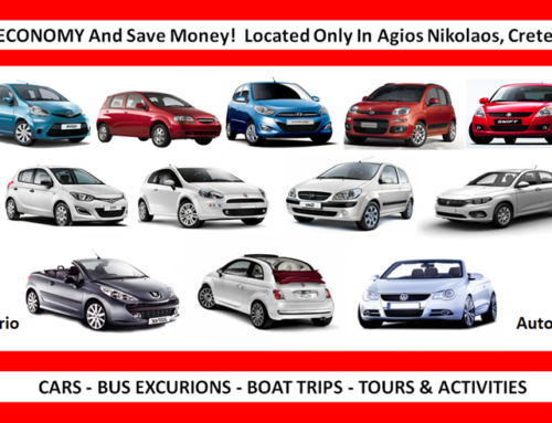 Car Rental in all Languages